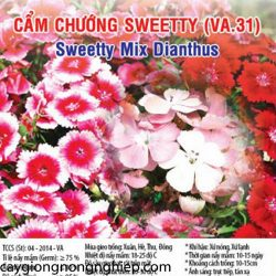 cam-chuong-sweetty-va31