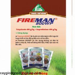 fireman2-1