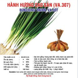 hanh huong cao san 10gr