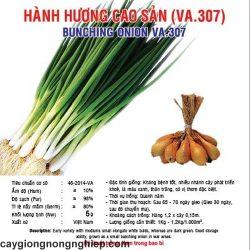 hanh huong cao san 5gr