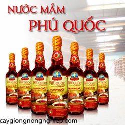nuoc-mam-phu-quoc-2