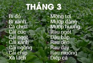 thang-3