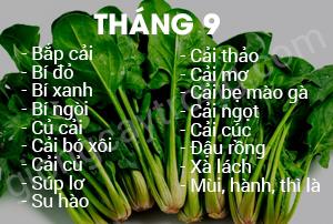 thang-9
