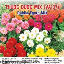 thuoc-duoc-mix-va37